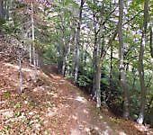 sentiero-dei-fotografi-6