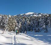 corso-di-escursionismo-invernale-con-racchette-da-neve-1