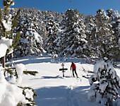 corso-di-escursionismo-invernale-con-racchette-da-neve-3